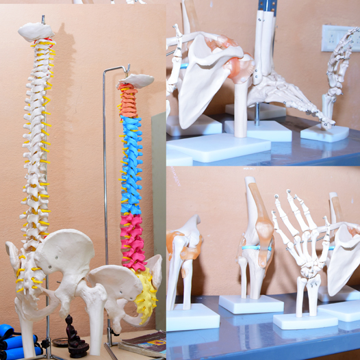 Physiotherapy BPT